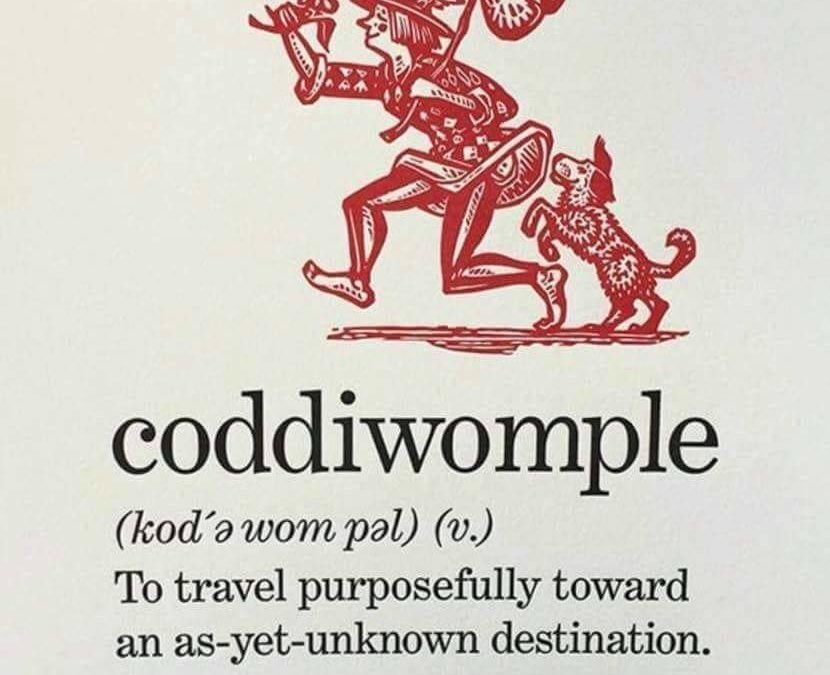 I plan to coddiwomple in 2019